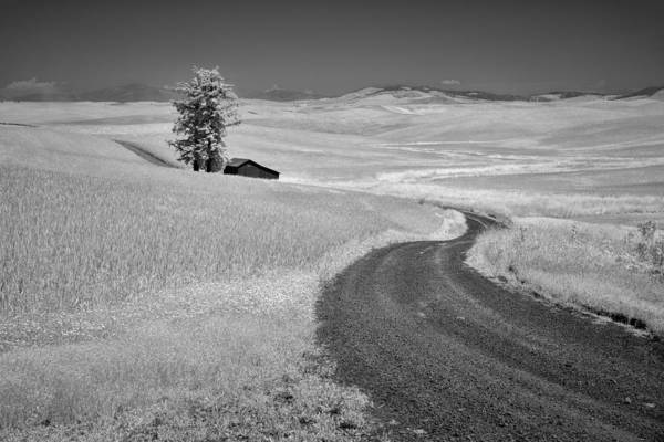 Photograph - Serpentine Passage by Jon Glaser