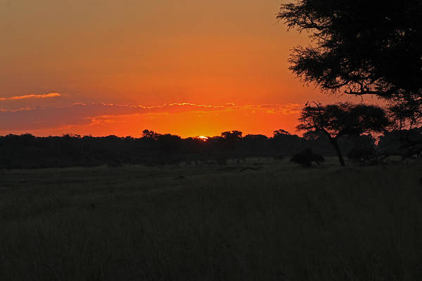 Photograph - Setting Sun by Tony Murtagh