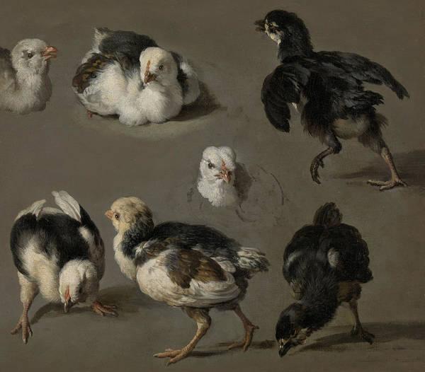 Wall Art - Painting - Seven Chicks by Melchior de Hondecoeter