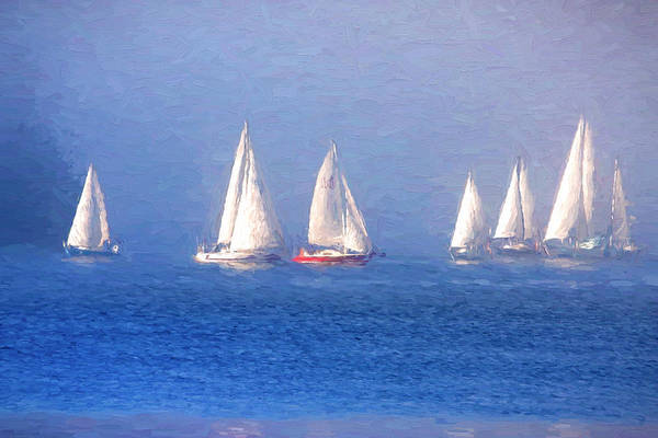 Photograph - Seven Sailboats Sailing On The Sea by Peggy Collins