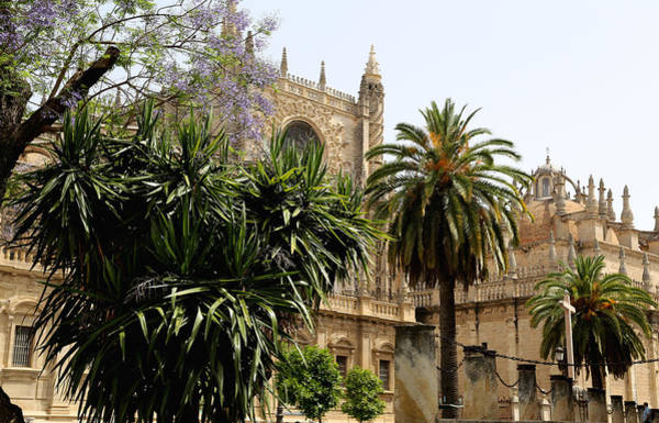 Photograph - Seville 15 by Andrew Fare