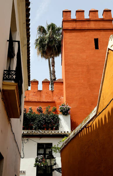 Photograph - Seville 16 by Andrew Fare