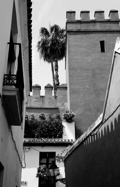 Photograph - Seville 16b by Andrew Fare