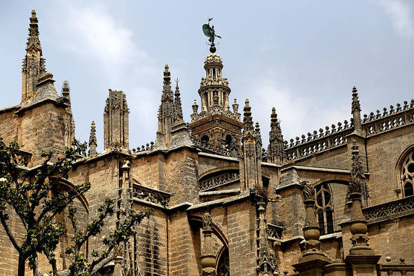 Photograph - Seville 19 by Andrew Fare
