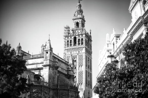 Catedral De Sevilla Wall Art - Photograph - Seville Cathedral Profile by John Rizzuto