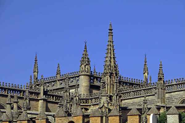 Photograph - Seville Cathedral Roof by Tony Murtagh