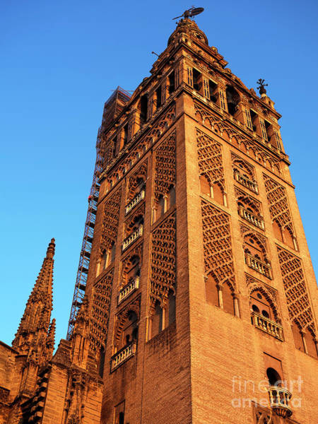 Catedral De Sevilla Wall Art - Photograph - Seville Cathedral Tower by John Rizzuto
