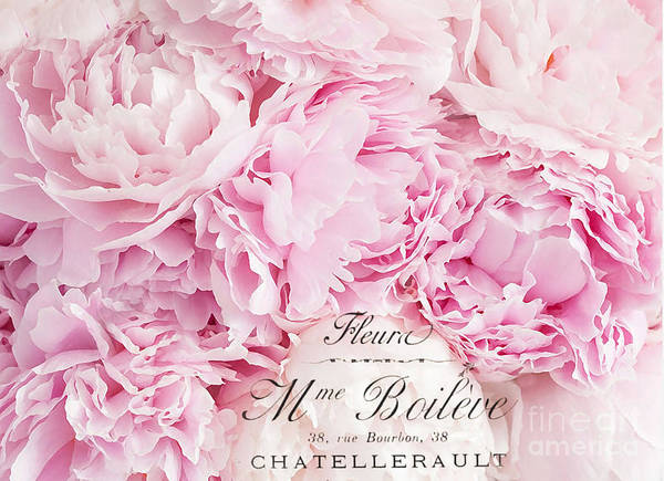 Wall Art - Photograph - Shabby Chic Pink Pastel Peonies French Script - Paris Pink Peonies Baby Girl Nursery Decor by Kathy Fornal