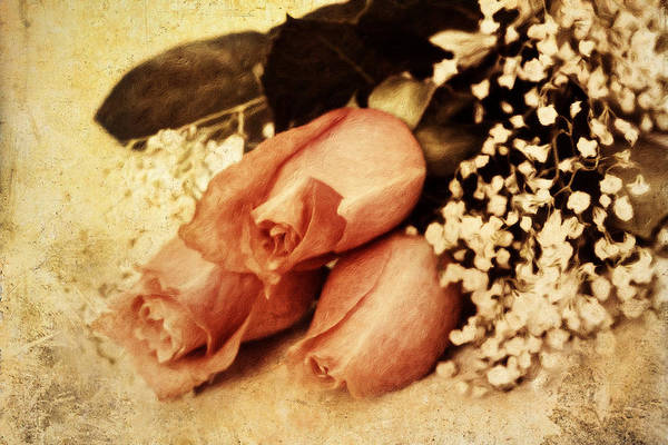 Processing Mixed Media - Shabby Orange Vintage Roses by Isabella Howard