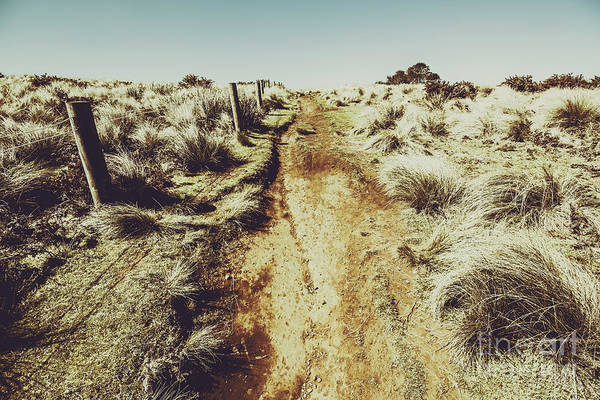 Grassland Photograph - Shabby Outback Path by Jorgo Photography - Wall Art Gallery