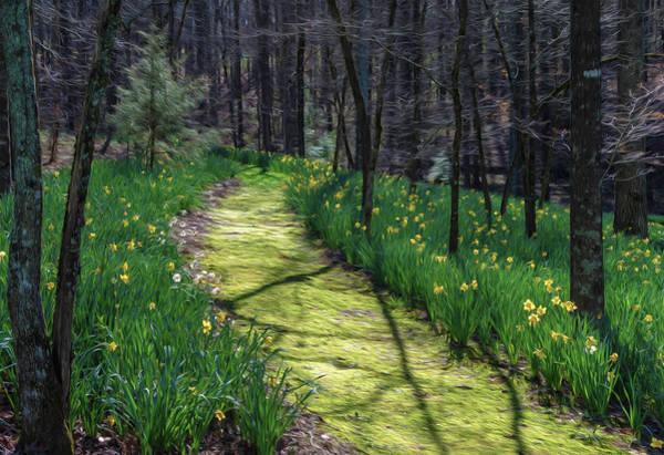Digital Art - Shaded Spring Stroll 2 by Keith Smith
