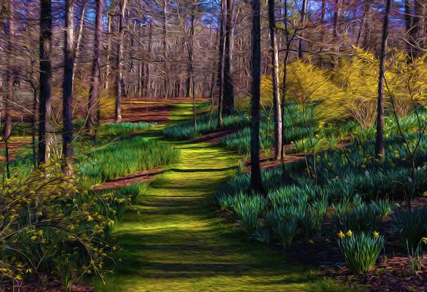 Digital Art - Shaded Spring Stroll by Keith Smith