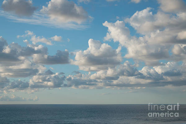 Photograph - Shades Of Blue by Ana V Ramirez