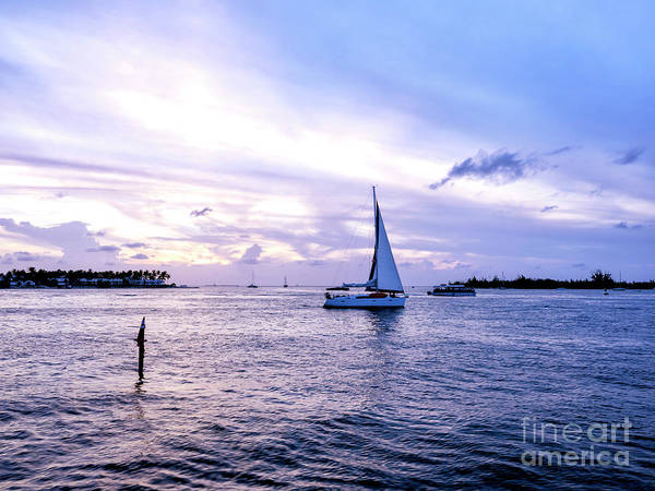 Photograph - Shades Of Blue At Night In Key West by John Rizzuto