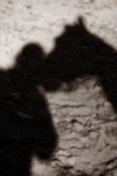 Photograph - Shadow Of Horse And Girl - Vertical by Angela Rath