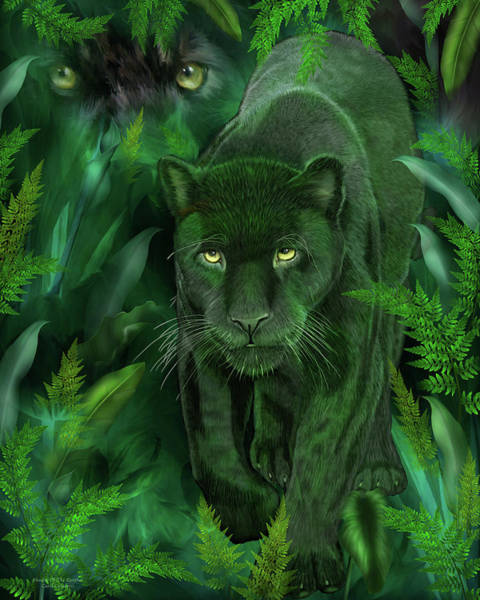 Black Panther Mixed Media - Shadow Of The Panther by Carol Cavalaris
