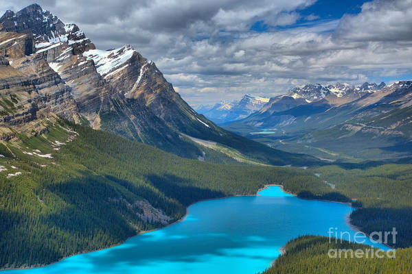 Photograph - Shadow Shades Of Peyto by Adam Jewell