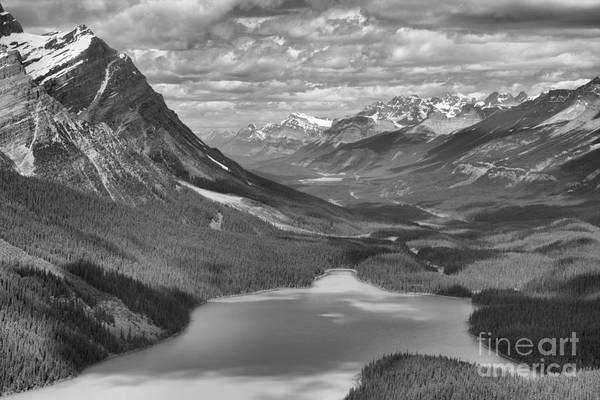 Photograph - Shadow Shades Of Peyto Black And White by Adam Jewell