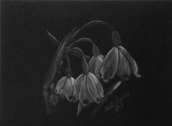 Snowdrop Painting - Shadow Snowdrops by Alexis Grone