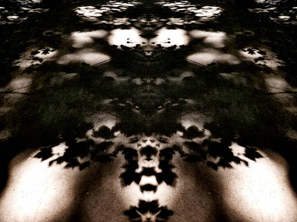 Digital Art - Shadows And Mirrors by Susan Kinney