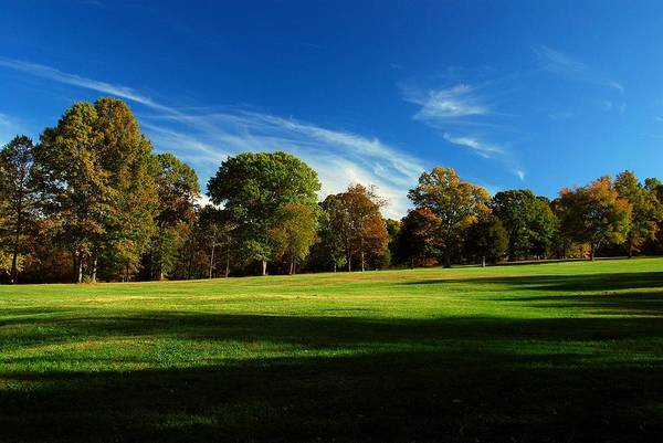 Photograph - Shadows And Trees Of The Afternoon - Monmouth Battlefield Park by Angie Tirado