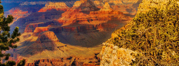 Photograph - Shadows Dance In The Grand Canyon by Ola Allen