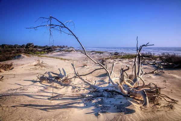Photograph - Shadows In The Sanddunes by Debra and Dave Vanderlaan
