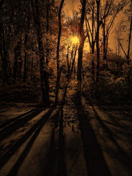 Photograph - Shadows by Lourry Legarde