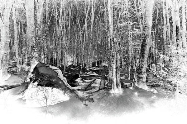 Photograph - Shadows Of Winter by David Patterson