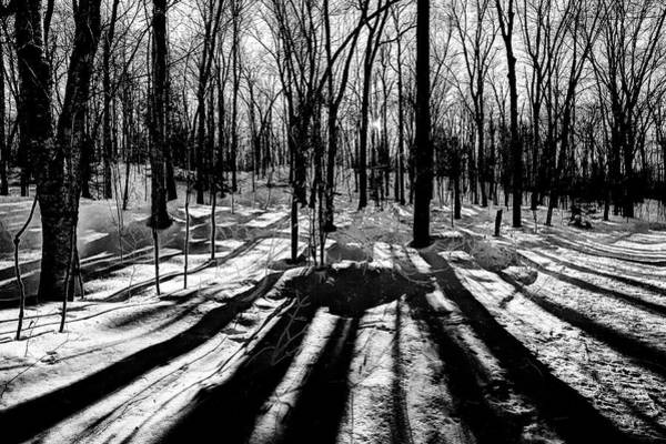 Photograph - Shadows On The Snowy Landscape by David Patterson