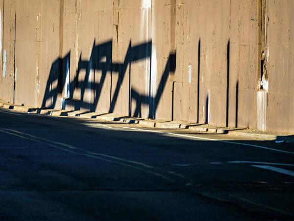 Photograph - Unconscious Shape by Robin Zygelman