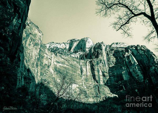 Photograph - Shadows Turn by Adam Morsa