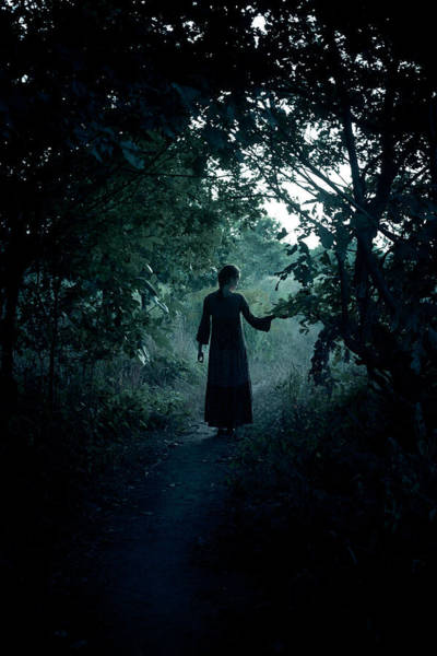 Gothic Photograph - Shadowy Path by Cambion Art