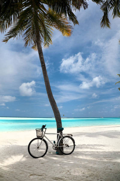 Hue Photograph - Shady Bicycle by Sean Davey