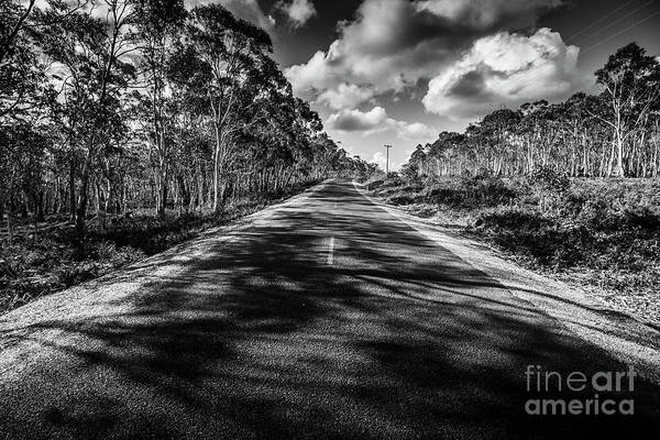 Wall Art - Photograph - Shady Lane by Jorgo Photography - Wall Art Gallery