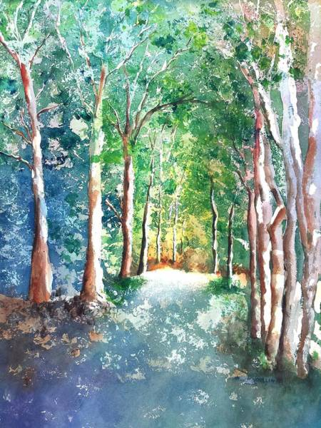 Wall Art - Painting - Shady Tree Lined Country Road by Carlin Blahnik CarlinArtWatercolor