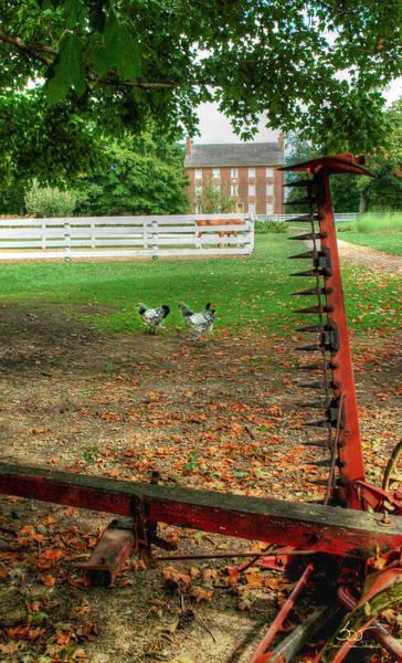 Photograph - Shaker Chickens by Sam Davis Johnson