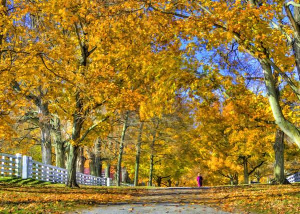 Photograph - Shaker Fall Walk by Sam Davis Johnson