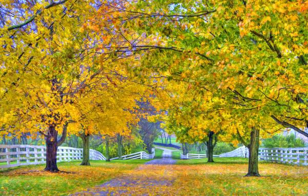 Photograph - Shaker Fall Walkway 3 by Sam Davis Johnson