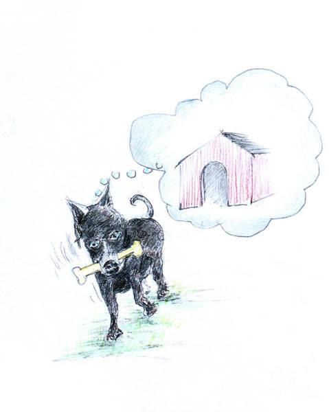 Hund Drawing - Shall I Take It Home by Anthony Vandyk