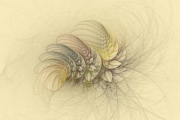 Digital Art - Shallazar Ferns by Doug Morgan