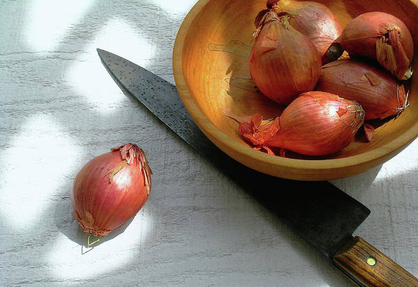 James Temple Photograph - Shallots by James Temple