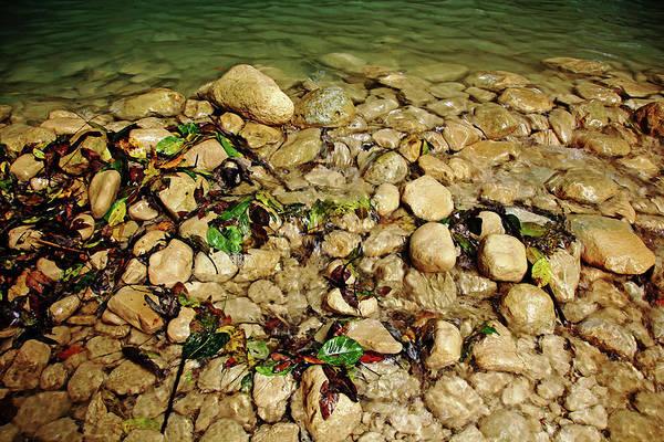 Puerto Plata Photograph - Shallows Damajagua River by Debbie Oppermann
