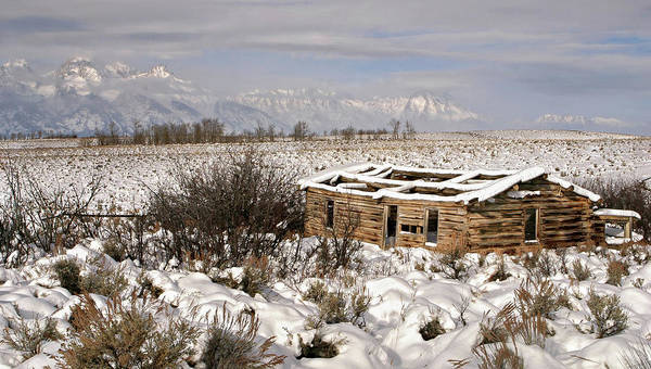 Photograph - Shane's Cabin by Ronnie and Frances Howard