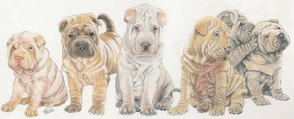 Wall Art - Mixed Media - Chinese Shar Pei Puppies by Barbara Keith