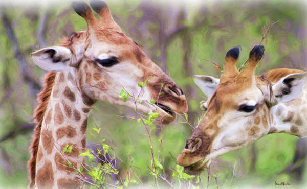 Photograph - Sharing A Snack - Painting by Ericamaxine Price