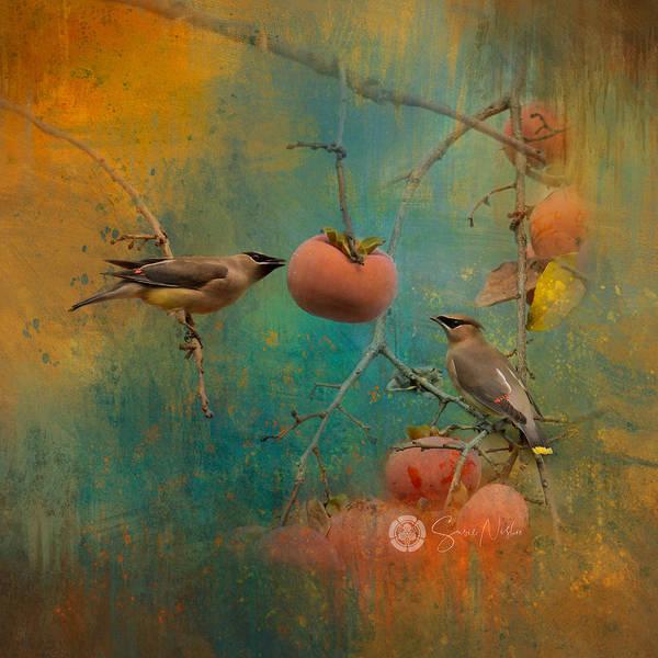 Waxwing Digital Art - Sharing by Susan Nishio