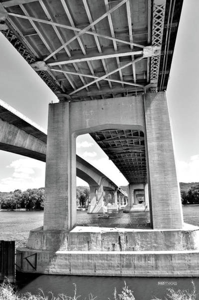 Photograph - Sharing The River 2 by Susie Loechler