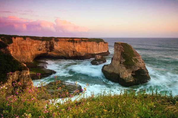 Wall Art - Photograph - Shark Fin Cove by Catherine Lau