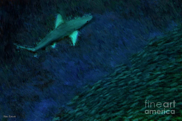 Photograph - Shark In The Dark by Blake Richards
